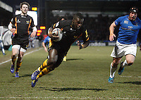 Photo: Richard Lane/Richard Lane Photography. London Wasps v Leinster Rugby. Amlin Challenge Cup Quarter Final. 05/04/2013. Wasps' Christian Wade goes over for his second try.