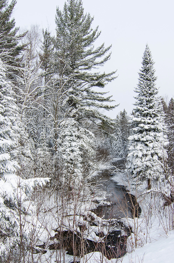 Fresh snow line the banks of this small Upper Peninsula of MI stream. Marquette County