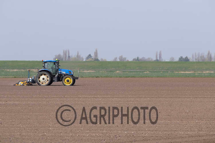 31-3-2021 Drilling sugar beet in the Cambridgeshire Fens<br /> ©Tim Scrivener Photographer 07850 303986<br />      ....Covering Agriculture In The UK....