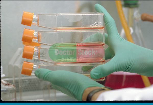 gloved hands carrying test samples
