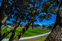 A general view on day one of the Plunket Shield match between the Wellington Firebirds and Auckland Aces at the Basin Reserve in Wellington, New Zealand on Saturday, 14 November 2020. Photo: Dave Lintott / lintottphoto.co.nz