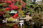 Pagoda in Japanese Garden, Point Defiance Park