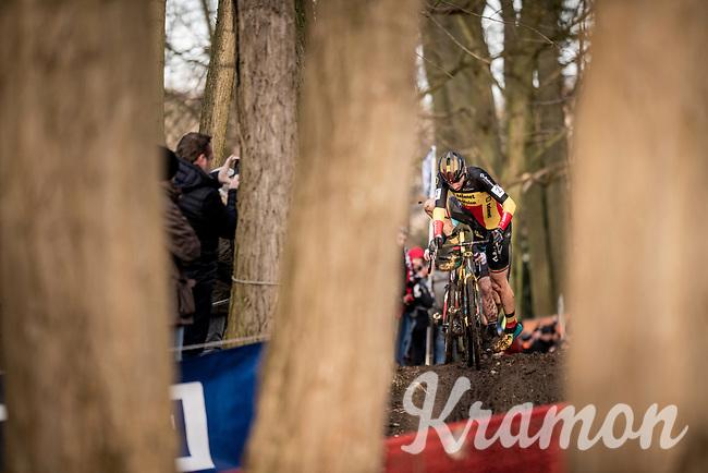 Belgian CX champion Toon Aerts (BEL/Telenet Baloise Lions)<br /> <br /> 82nd Druivencross Overijse 2019 (BEL)<br />  <br /> ©kramon