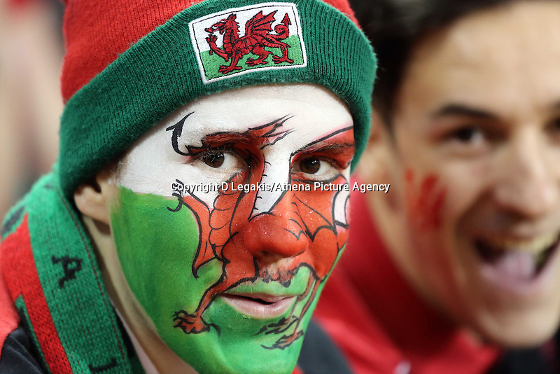 Pictured: A Wales supporter Saturday 29 November 2014<br /> Re: Dove Men Series 2014 rugby, Wales v South Africa at the Millennium Stadium, Cardiff, south Wales, UK.