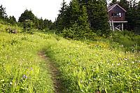 Clemen's Cabin, Lost Lake Trail, Kenai Peninsula, Chugach National Forest, Alaska.