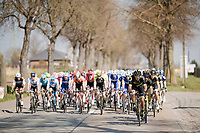 62nd E3 BinckBank Classic (Harelbeke) 2019 <br /> One day race (1.UWT) from Harelbeke to Harelbeke (204km)<br /> <br /> ©kramon