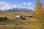 Ranch barn at the base of Wilson Peak (14,016 ft), San Juan Mountains, Colorado, USA