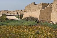 Asie/Israël/Galilée/Césarée: Ruines de Césarée - les remparts de la citadelle  //  Asia, Israel, Galilee, Caesarea Maritima: The ruins of Caesarea Maritima, ramparts of the citadel