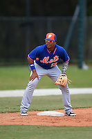 New York Mets Jhoan Urena (13) during practice before a minor league spring training game against the St. Louis Cardinals on April 1, 2015 at the Roger Dean Complex in Jupiter, Florida.  (Mike Janes/Four Seam Images)