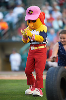 Rochester Red Wings mascot Mitsy on field promotion during a game against the Lehigh Valley IronPigs on July 4, 2015 at Frontier Field in Rochester, New York.  Lehigh Valley defeated Rochester 4-3.  (Mike Janes/Four Seam Images)