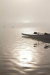 Rowing, Fog, Rowers, United States National Rowing Team, Men's Quad, Launching racing shells; 2010 FISA World Rowing Championships; Lake Karapiro; Hamilton; New Zealand; November 4, 2010;