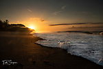 Costa Rica, Osa Peninsula (Camera Bits blog )