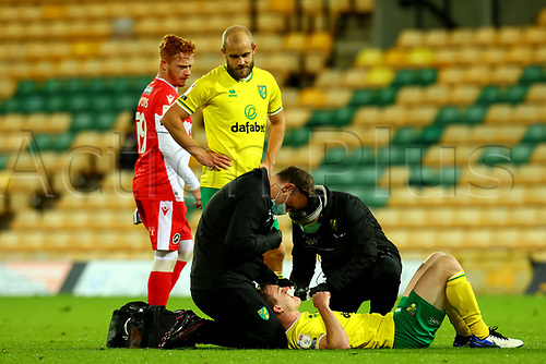 3rd November 2020; Carrow Road, Norwich, Norfolk, England, English Football League Championship Football, Norwich versus Millwall; Teemu Pukki of Norwich City checks on Oliver Skipp as he receives treatment