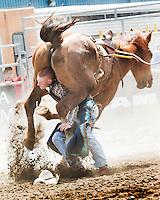 Ram Rodeo Tour'14  Belleville