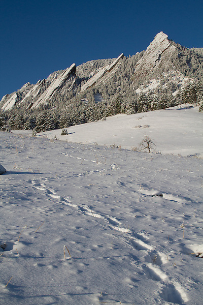 Snow at Chautauqua Park, Boulder, Colorado, USA .  John leads private photo tours in Boulder and throughout Colorado. Year-round. .  John leads private photo tours in Boulder and throughout Colorado. Year-round Boulder photo tours.