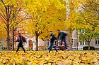 November 5, 2018; Fall leaves on South Quad (Photo by Matt Cashore)