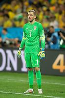 Croatia goalkeeper Stipe Pletikosa