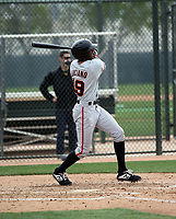 Marco Luciano - San Francisco Giants 2019 spring training (Bill Mitchell)