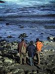 November 2002-Isla de Ons, Parque Nacional de las Islas Atlánticas, A Coruña. The Prestige tanker broke apart and sank November 19 off the coast of Spain, spilling an estimated 17,000 tons of oil into the sea and taking 60,000 tons to the bottom with it. © Pedro Armestre..El desastre del Prestige se produjo cuando un buque petrolero monocasco resultó accidentado el 13 de noviembre de 2002, mientras transitaba cargado con 77.000 toneladas de petróleo, frente a la costa de la Muerte, en el noroeste de España, y tras varios días de maniobra para su alejamiento de la costa gallega, acabó hundido a unos 250 km de la misma. La marea negra provocada por el vertido resultante causó una de las catástrofes medioambientales más grandes de la historia de la navegación, tanto por la cantidad de contaminantes liberados como por la extensión del área afectada, una zona comprendida desde el norte de Portugal hasta las Landas de Francia. El episodio tuvo una especial incidencia en Galicia, donde causó además una crisis política y una importante controversia en la opinión pública..El derrame de petróleo del Prestige ha sido considerado el tercer accidente más costoso de la historia. © Pedro Armestre