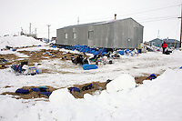 Dog teams rest out of the wind behind the National Guard Armory checkpoint building in Shaktoolik on Monday