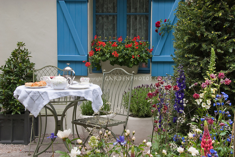 Dining Outdoors in the House Garden Patio with Spring Flowers and windowbox of geraniiums. Perennial garden plants Lupines, Delphinium, Roses, Aquilegia columbine for cutting. Wrought iron patio furniture table and chairs, croissants, breakfast, eating outdoors, evergreens, lavender herb