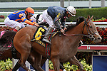 March 29, 2014:  #6 Gamay Noir with jockey Paco Lopez on board wins the Rampart Stakes G3  at Gulfstream Park in Hallandale Beach, FL.  Liz Lamont/ESW/CSM