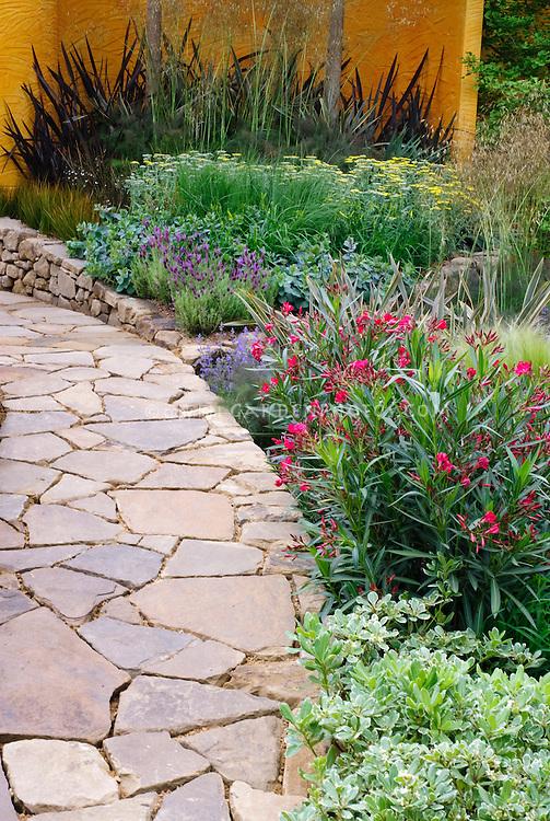 Stone walkway and wall, Nerium oleander shrub, Nepeta, Fennel, Lavandula stoechas, Achillea, ornamental grass, wall