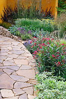 Stone walkway and wall, Nerium oleander shrub, Nepeta, Fennel, Lavandula stoechas, Achillea, ornamental grass, wall