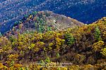 White Mountain Wild Area from Pine Swamp Vista, Bald Eagle State Forest, Pennsylvania