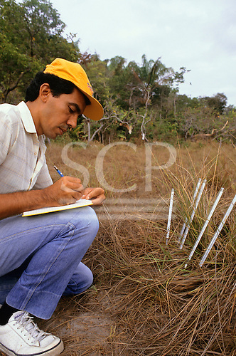 Amazon, Brazil. Botanist with notebook recording scientific data, using thermometers to measure soil temperature.