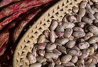 Fagioli. Beans...