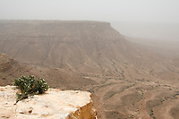 Tarmeisa, Libya - View of the Jebel Nafusa and the Sahel al-Jefara below.  A strong wind from the south, the ghibli, stirs dust up into the air.