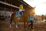 DEL MAR,CA-SEPTEMBER 01: Vasilika,ridden by Flavien Prat, prepares for the John C. Mabee Stakes at Del Mar Race Track on September 1,2018 in Del Mar,California (Photo by Kaz Ishida/Eclipse Sportswire/Getty Images)