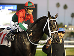 November 27, 2011.Ultimate Eagle ridden by Martin Pedroza heads for the winner's circle after winning the Hollywood Derby  at Hollywood Park, Inglewood, CA