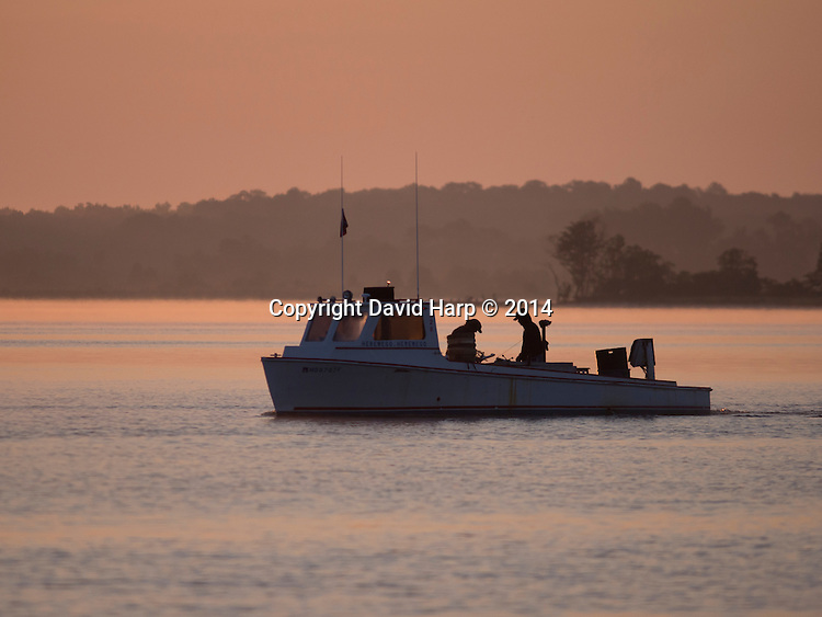 Watermen trotline for crabs in the Choptank River,