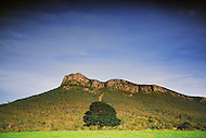 Image Ref: T009<br />