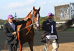 September 20, 2014:  California Chrome, led by Willie Delgado (left) and Raul Rodriguez, heads to the paddock for the Grade II Pennsylvania Derby at Parx Racing in Bensalem, PA.  Joan Fairman Kanes/ESW/CSM