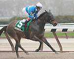 2011 04 16: Nicole H with Channing Hill up are easy winners  of the Grade 2 Distaff Handicap at 7 furlongs for fillies and mares at Aqueduct Racetrack. Trainer Michael Hushion. Owner GEM Racing