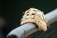 A first baseman's glove sits on the railing outside the Kannapolis Intimidators dugout prior to the game against the Asheville Tourists at Intimidators Stadium on May 28, 2016 in Kannapolis, North Carolina.  The Intimidators defeated the Tourists 5-4 in 10 innings.  (Brian Westerholt/Four Seam Images)