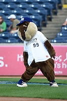 West Michigan Whitecaps mascot Crash before a game against the Great Lakes Loons on June 4, 2014 at Fifth Third Ballpark in Comstock Park, Michigan.  West Michigan defeated Great Lakes 4-1.  (Mike Janes/Four Seam Images)