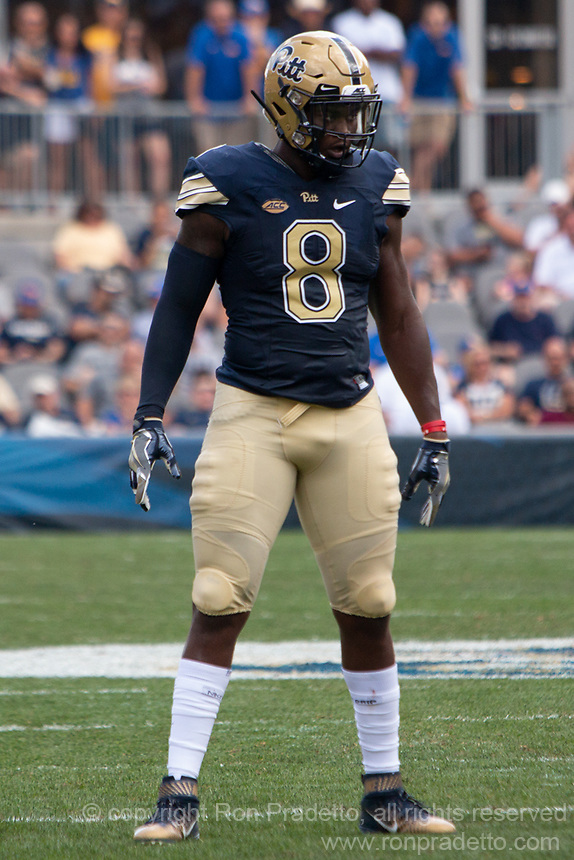 Pitt defensive lineman Dewayne Hendrix. The Pitt Panthers football team defeated the Albany Great Danes 33-7 on September 01, 2018 at Heinz Field, Pittsburgh, Pennsylvania.