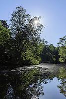Schlosspark in Palanga, Litauen, Europa