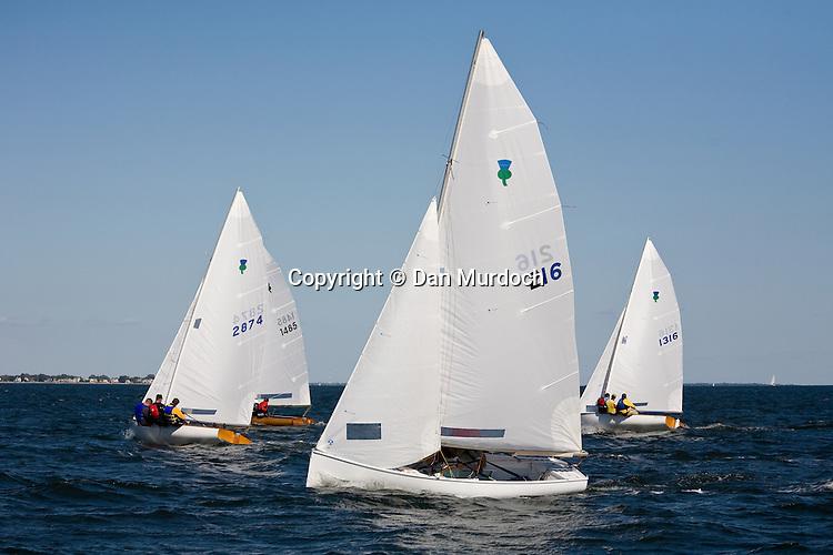 Thistle sailboats racing
