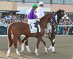 California Chrome (no. 1), ridden by Victor Espinoza and trained by Art Sherman, finishes sixth in the 35th running of the grade 2 Pennsylvania Derby for three year olds on September 20, 2014 at Parx Racing in Bensalem, Pennsylvania.  (Bob Mayberger/Eclipse Sportswire)