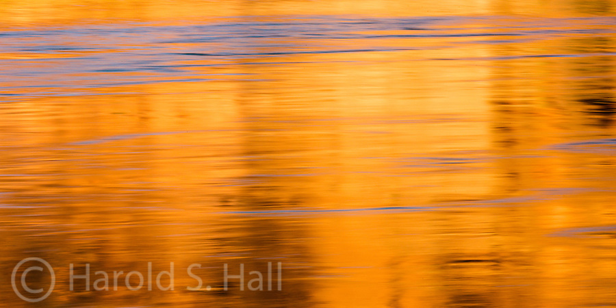 Floating down the Colorado River from Glenn Canyon Dam in Page, Arizona, the reflections in the water attracted me.  The vibrant blues and golds changed intensity and designs around each bend in the river.