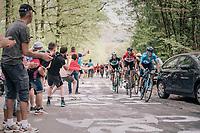 Alejandro Valverde (ESP/Movistar) up the Côte de la Roche aux Faucons<br /> <br /> 104th Liège - Bastogne - Liège 2018 (1.UWT)<br /> 1 Day Race: Liège - Ans (258km)