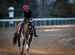Keepmeinmind, trainer Robertino Diodoro, exercises in preparation for the Breeders' Cup Juvenile at Keeneland 10.30.20.