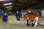 McGrath Hospice Fundraiser: Michael Kissane, Moyvane who won the calf at the McGrath Hospice fundraise held ay Listowel Mart on Wednesday 24th March pictured with Erin Stack organiser  & John Mulvihill, Moyvane who donated the calf