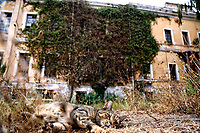 20210926 L'ex manicomio di Santa Maria della Pieta'