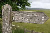 Northumberland, England, UK.  Hadrian's Wall Trail Marker near  Housesteads Roman Fort (Vercovicium).